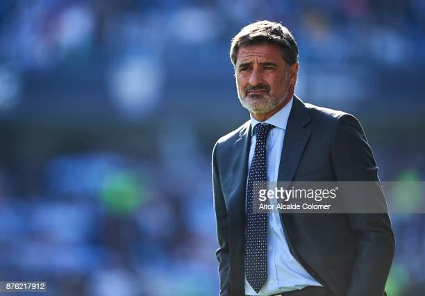 Head Coach of Malaga CF Michel Gonzalez looks on during the La Liga match between Malaga and Deportivo La Coruna at Estadio La Rosaleda on November...