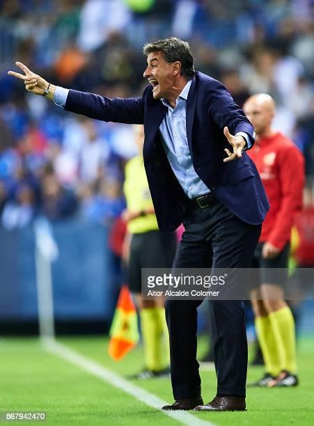 Head Coach of Malaga CF Michel Gonzalez reacts during the La Liga match between Malaga and Celta de Vigo at Estadio La Rosaleda on October 29 2017 in...