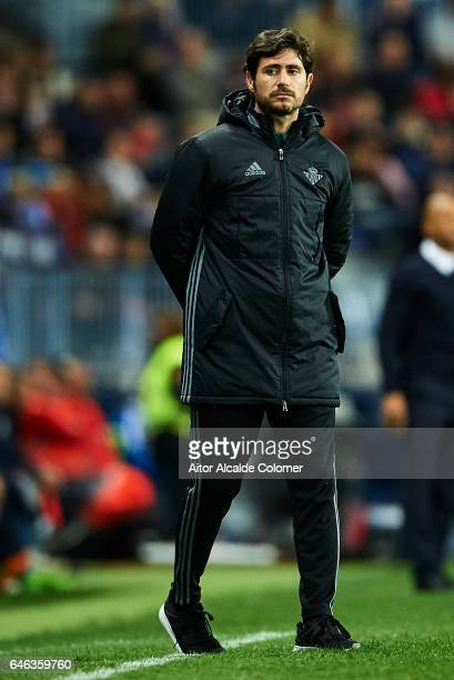 Head Coach of Real Betis Balompie Victor Sanchez del Amo looks on during La Liga match between Malaga CF and Real Betis Balompie at La Rosaleda...