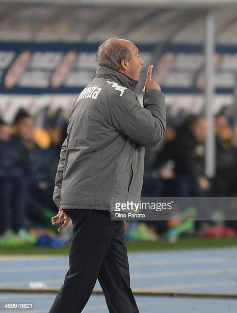 Head coach of Torino FC Giampiero Ventura gestures during the Serie A match between Hellas Verona FC and Torino FC at Stadio Marc'Antonio Bentegodi...