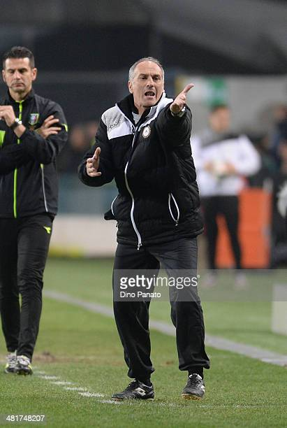 Head coach of Udinese Francesco Guidolin reacts during the Serie A match between Udinese Calcio and Calcio Catania at Stadio Friuli on March 31 2014...