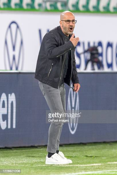 head coach Peter Bosz of Bayer 04 Leverkusen gestures during the Bundesliga match between VfL Wolfsburg and Bayer 04 Leverkusen at Volkswagen Arena...