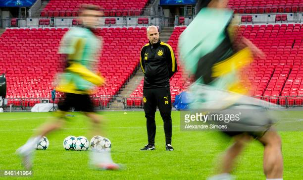 Head coach Peter Bosz of Borussia Dortmund during the training session prior to the UEFA Champions League First Qualifying Round 1st Leg match...