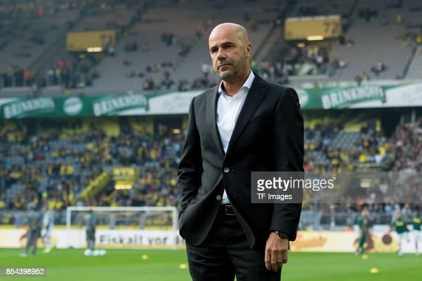 Head coach Peter Bosz of Dortmund looks on during the Bundesliga match between Borussia Dortmund and Borussia Moenchengladbach at Signal Iduna Park...