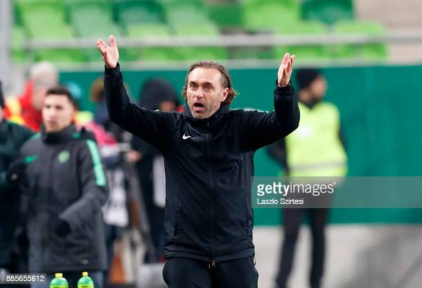 Head coach Thomas Doll of Ferencvarosi TC reacts during the Hungarian OTP Bank Liga match between Ferencvarosi TC and Videoton FC at Groupama Arena...