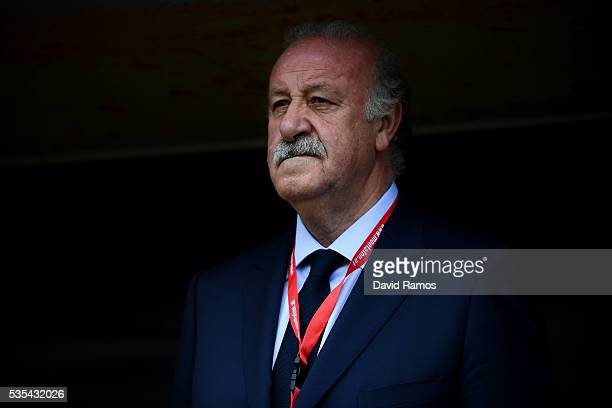 Head coach Vicente Del Bosque of Spain looks on before the kickoff of an international friendly match between Spain and Bosnia at the AFG Arena on...