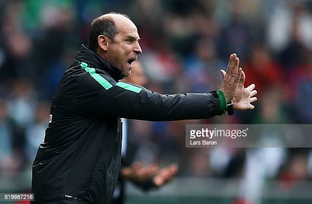 Head coach Viktor Skripnik of Bremen gestures during the Bundesliga match between Werder Bremen and FC Augsburg at Weserstadion on April 9 2016 in...