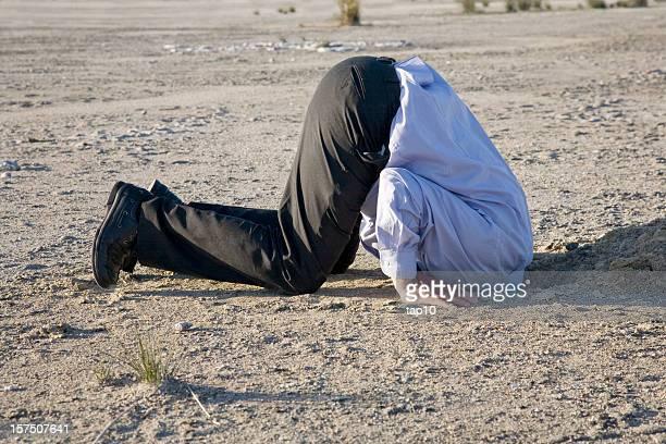 head in the sand - onwetendheid stockfoto's en -beelden