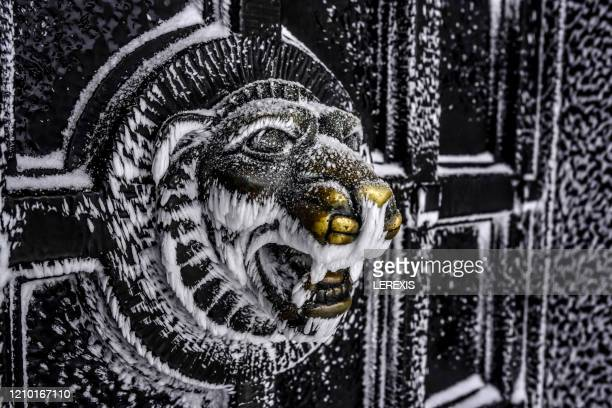 head of a lion on a metal door - lerexis stock pictures, royalty-free photos & images