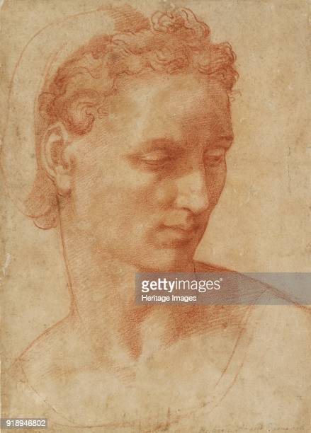 Head of a Woman early 16th century Dimensions height x width sheet 307 x 219 cm