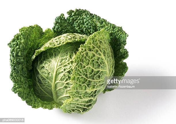 head of cabbage, close-up - cabbage stock pictures, royalty-free photos & images