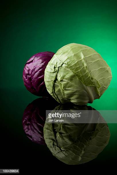 Head of Cabbage on Black Glass