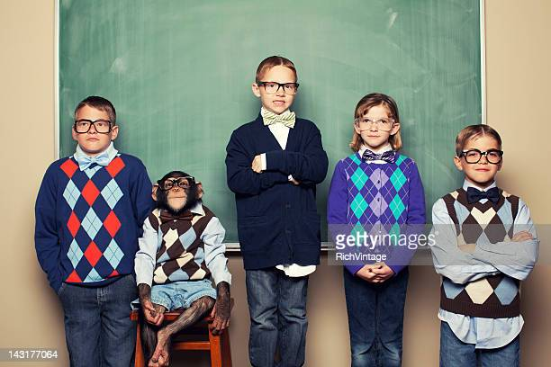 head of class - one animal stock pictures, royalty-free photos & images
