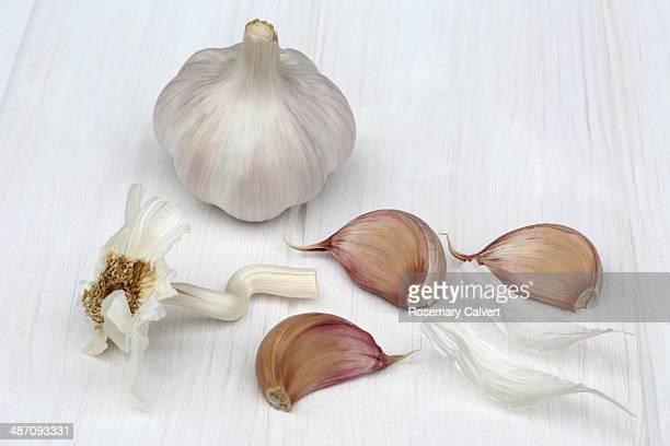 head of garlic and three loose cloves - cabeza de ajos fotografías e imágenes de stock