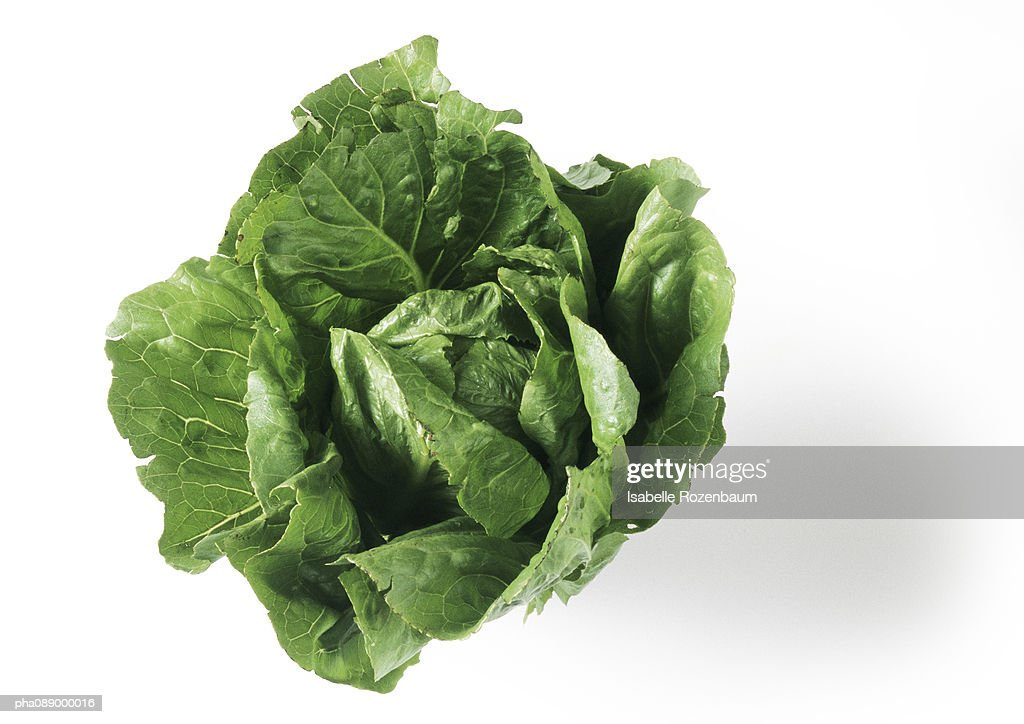 Head of romaine lettuce, top view, close-up : Stock Photo