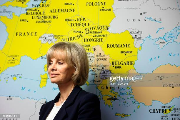 Head of the French National Assembly Foreign Affairs Committee and former French Justice Minister Elisabeth Guigou poses on February 12 2014 at the...