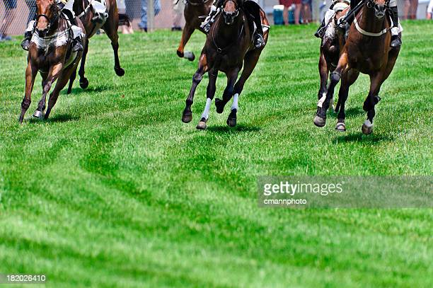 head on horse racing on turf as they round a corner - horse racing stock pictures, royalty-free photos & images