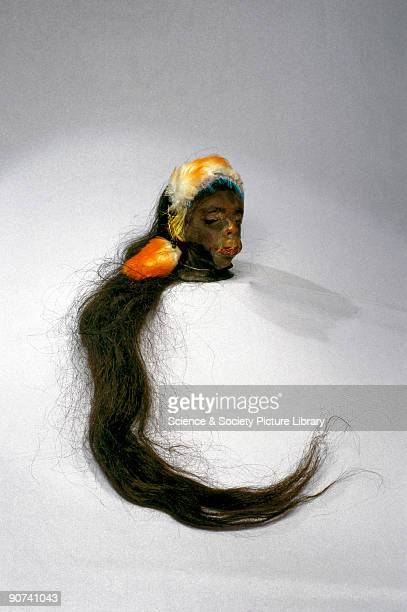 Head shrinking is practised by several tribes in South America notably the Jivaro of southern Ecuador They believe that if an enemy is killed in...