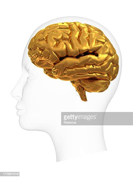 head with gold brain