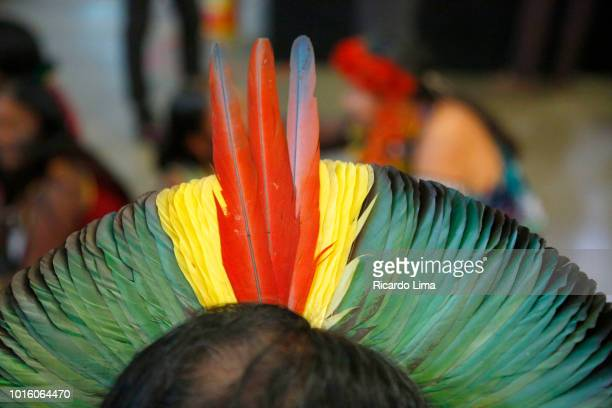 headdress of an indigenous of kayapo ethnic group, para state, brazil - ornamento del capo foto e immagini stock