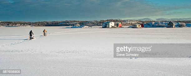 Heading home on thin ice