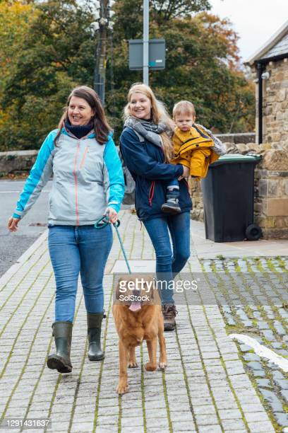 heading out for a dog walk - town stock pictures, royalty-free photos & images