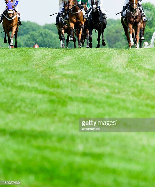 head-on horse racing on turf - horse racing stock pictures, royalty-free photos & images
