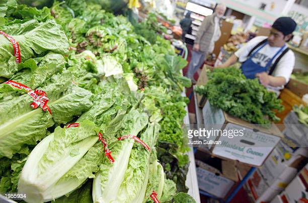 Heads of romaine lettuce fill a produce case at the Fruit Barn produce store in San Francisco Laboratory studies commissioned by the Environmental...