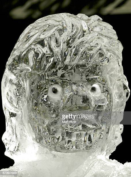A headshot made out of ice of Parramatta Eels NRL player Tim Smith is unveiled at Church Street Mall on April 22 2006 in Sydney Australia