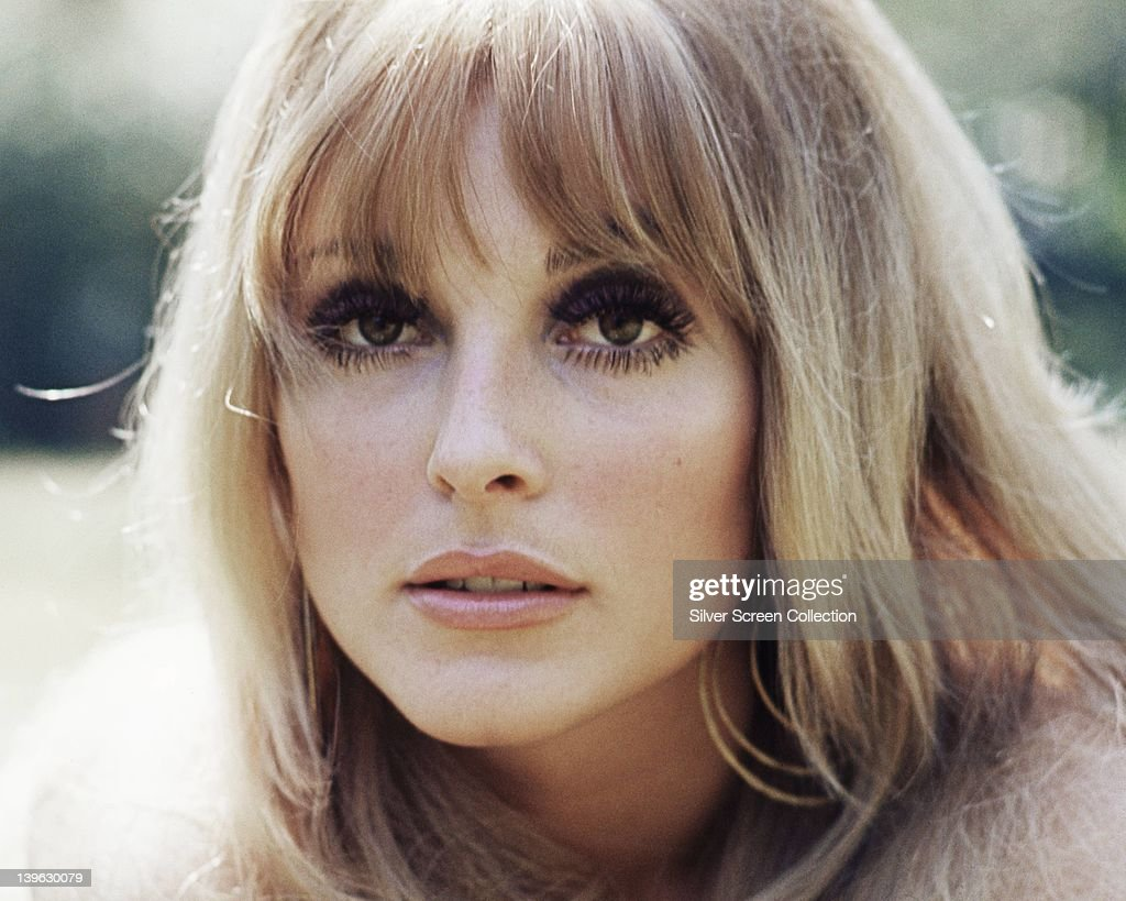 Headshot of Sharon Tate (1943-1969), US actress, circa 1965.