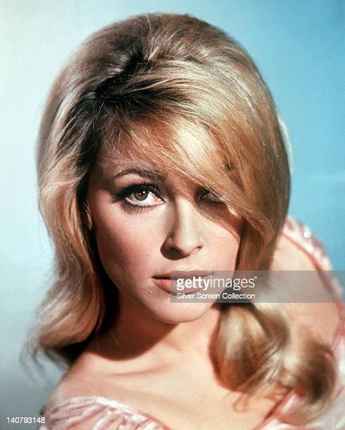 Headshot of Sharon Tate US actress in a studio portrait against a light blue background circa 1965