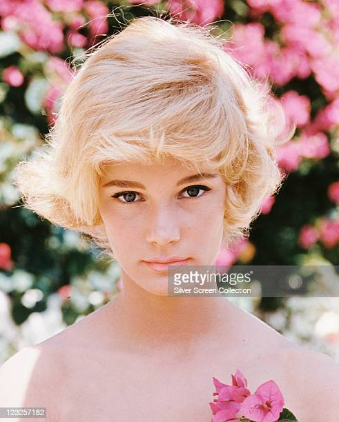 Headshot of Yvette Mimieux US actress posing with pink flowers in the foreground and background circa 1975