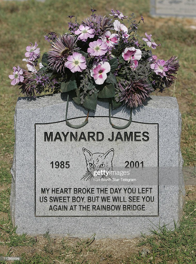 Headstone With Inscription At The Smoke Rise Farm Pet Cemetery In News Photo Getty Images
