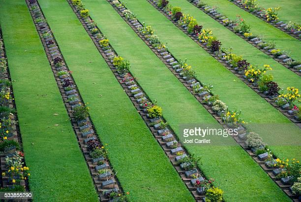 Headstones at Kanchanaburi War Cemetery in Thailand