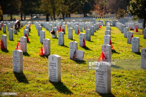 Headstones in Section 60 at Arlington National Cemetery on November 11 2018 in Arlington Virginia