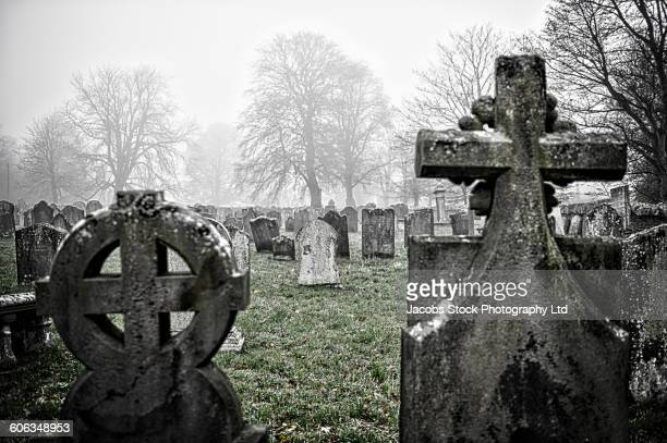 headstones of graves in cemetery - cemetery stock photos and pictures