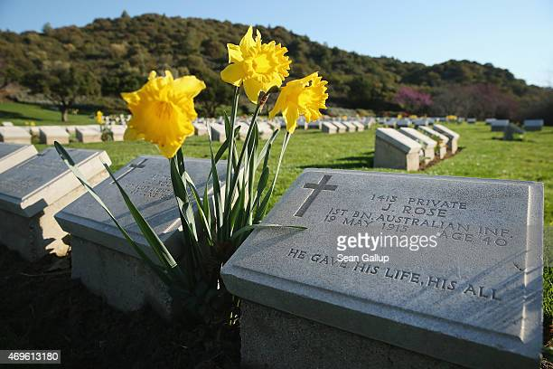 Headstones of mostly Australian soldiers who died during the Gallipoli Campaign lie at Shrapnel Valley Cemetery near Anzac Cove on April 8, 2015 near...