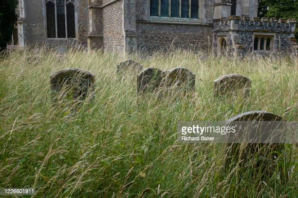 Headstones stand in long grass of the cemetery at the Church of St Lawrence on 10th July 2020 in Great Waldingfield Suffolk England