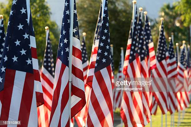 healing field with american flags - memorial day remembrance stock pictures, royalty-free photos & images