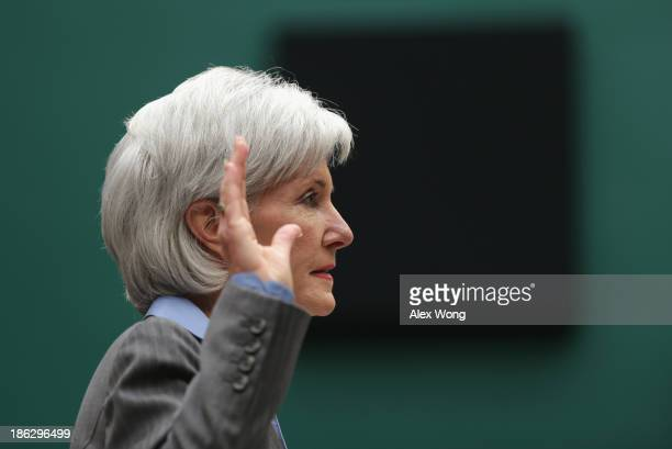 Health and Human Services Secretary Kathleen Sebelius is sworn in prior to the House Energy and Commerce Committee hearing about the troubled launch...