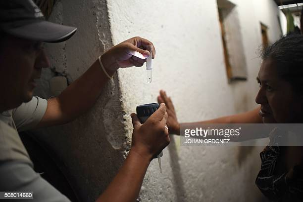 Health ministry workers show a larva of Aedes aegypti mosquito vector of the dengue Zika and Chikungunya viruses in the Bethania neighborhood in...