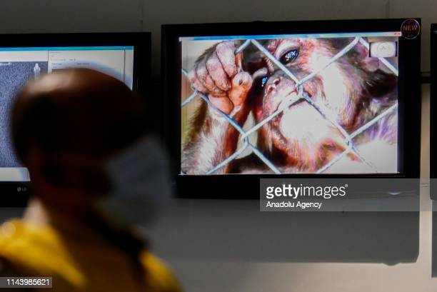 A health officer stands in front of a monkeypox virus information at SoekarnoHatta International Airport in Tangerang near Jakarta Indonesia on May...
