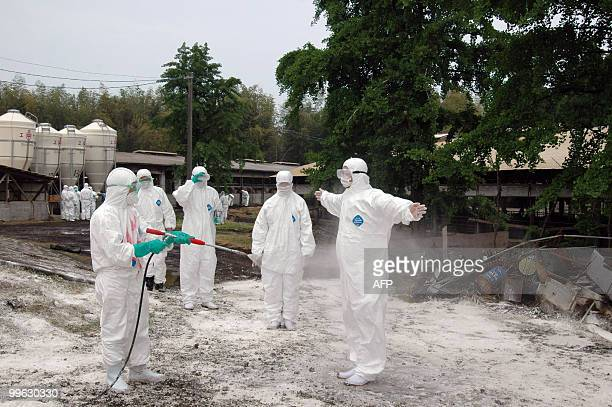 Health officers sprays antiseptic while sterilizing a farm in Kawaminami town in Miyazaki prefecture on May 7 2010 Japan's famed Miyazaki premium...