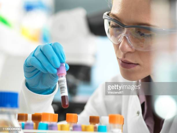 health screening, scientist holding a tube containing a blood sample ready for analysis in the laboratory - blood photos stock pictures, royalty-free photos & images