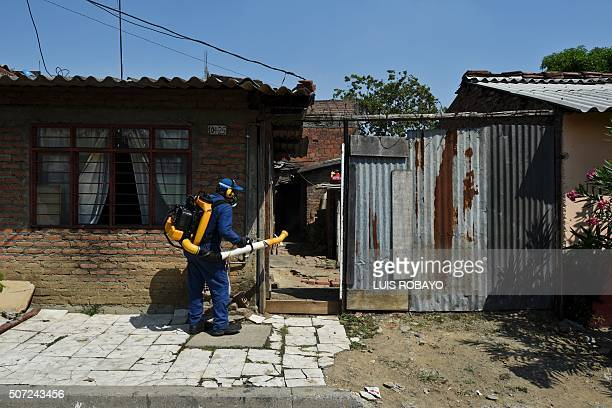 A Health Secretary employee fumigates against mosquito Aedes Aegypti mosquito inside a house in Cali Colombia on January 28 2016 The Zika virus is...