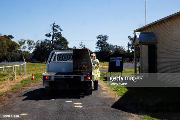 Health worker approaches a truck at a pop up COVID-19 clinic at Narromine Racecourse on September 08, 2021 in Narromine, Australia. New freedoms have...