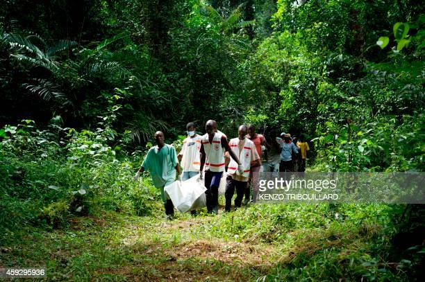 Health workers from Guinea's Red Cross carry the body of a victim of Ebola in Momo Kanédou in Guinea on November 19 2014 Guinea and fellow west...