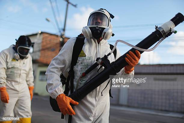 Health workers fumigate in an attempt to eradicate the mosquito which transmits the Zika virus on January 28, 2016 in Recife, Pernambuco state,...