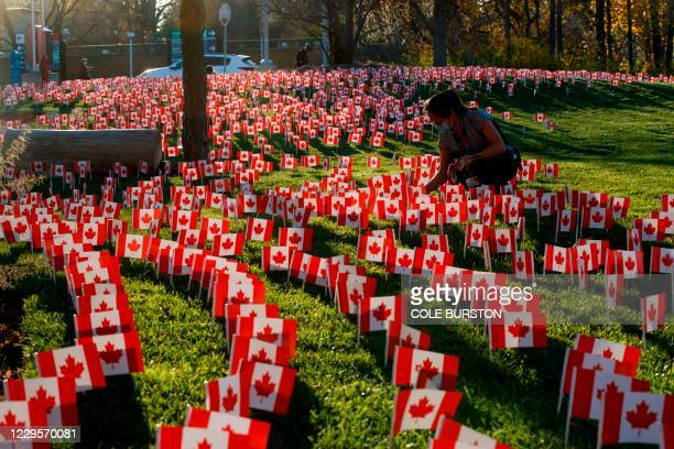 Healthcare worker places miniature Canadian Flags outside the Sunnybrook Hospital on November 10, 2020 ahead of Remembrance Day in Toronto, Ontario,...