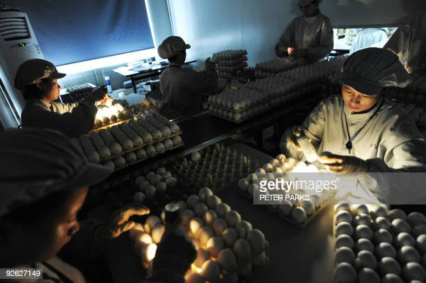 Health-flu-China-company-Sinovac-vaccine by Francois Bougon Lab technicians check eggs which are used to cultivate flu vaccines at the Chinese...